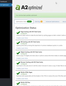 screenshot of the A2 Optimized feature for WordPress based websites